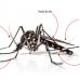 Plan de vigilancia del mosquito tigre