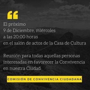 COMISIÓN DE CONVIVENCIA CIUDADANA