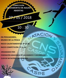 CARTEL TIPO CNS-1