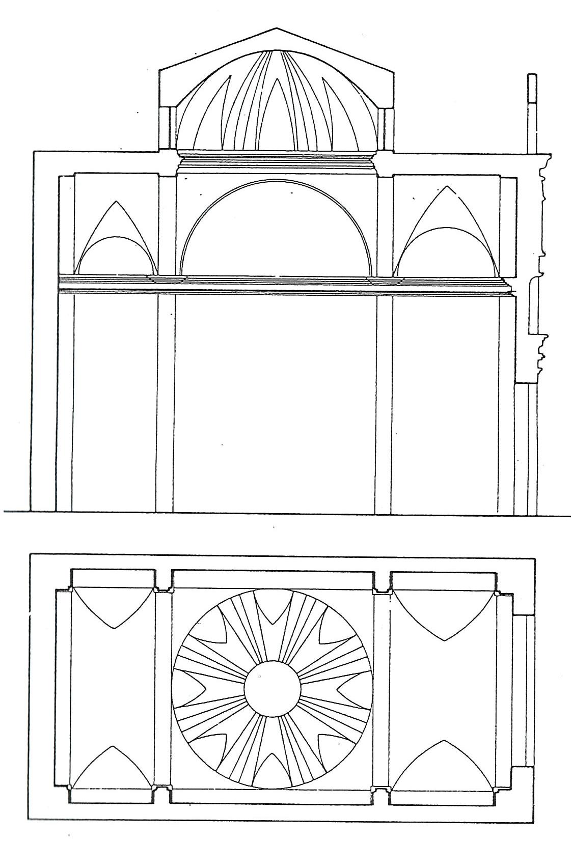Roque planta